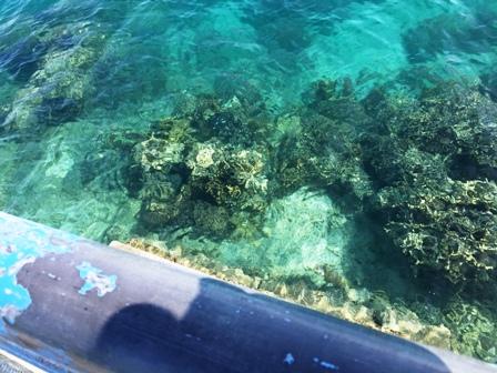 View ke dasar laut
